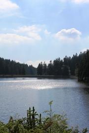 Camping im Harz im Sommer