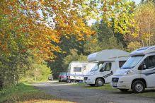 Camping im Harz mit Herbstlaub